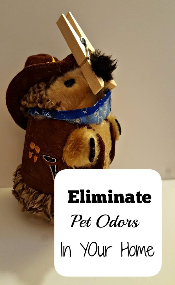 how we eliminate pet odors in our house