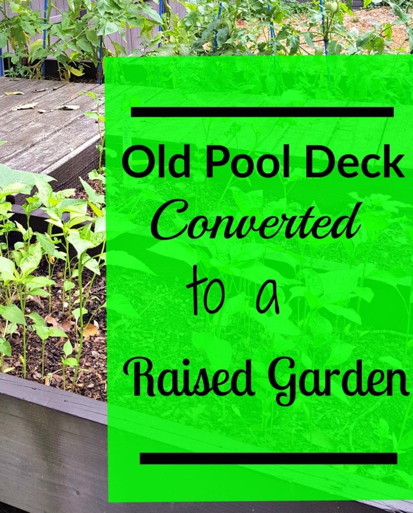 Old Pool Deck Converted to Raised Garden Beds