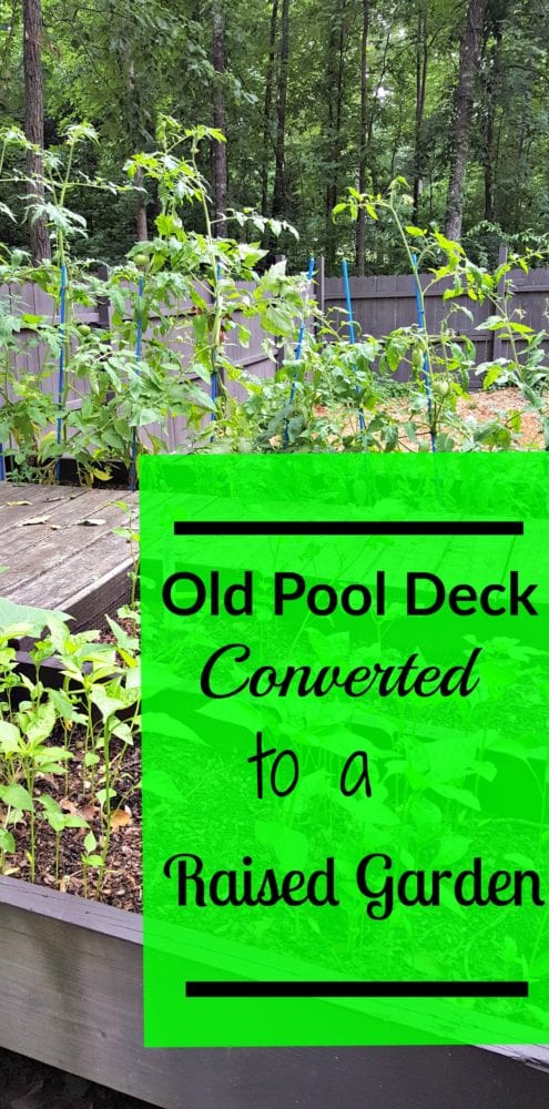 Simple spring updates for your home modern on monticello for Convert pool to garden