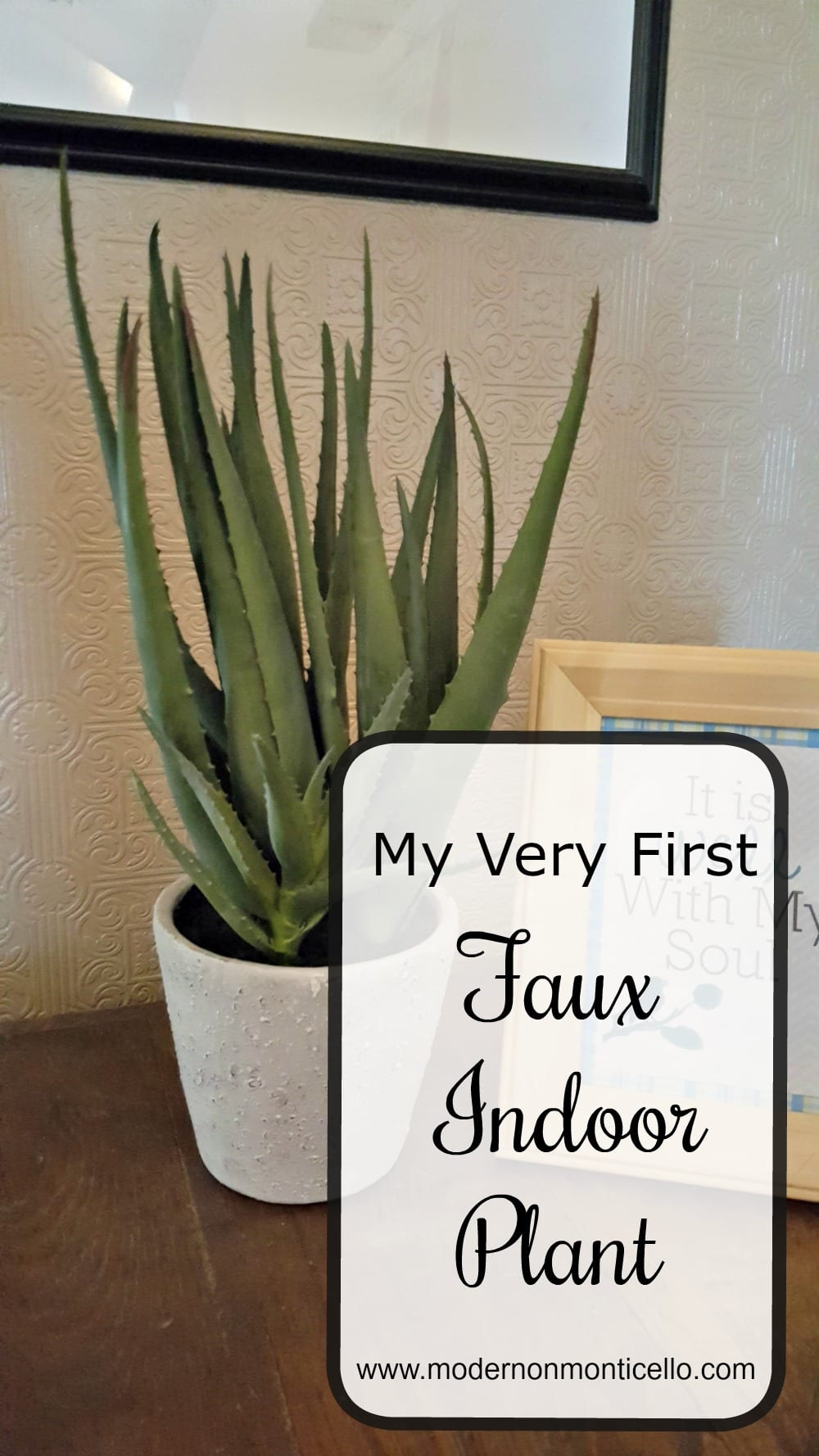 decorating with my first faux indoor plant - modern on monticello Faux Indoor Plants