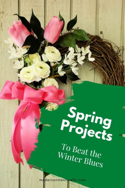 Spring Projects Winter Blues